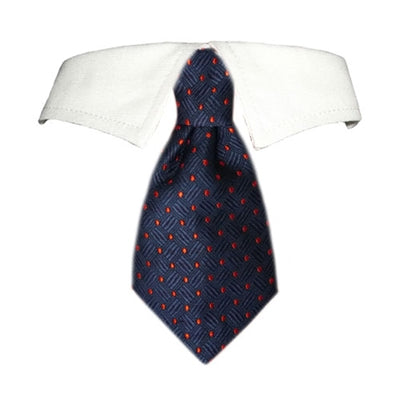 Colton Shirt Collar - Bark Fifth Avenue
