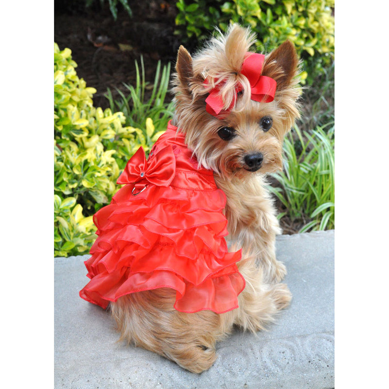 Red Satin Ruffled Dress with D Ring and Leash - Bark Fifth Avenue