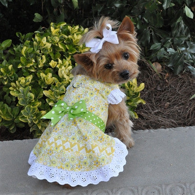 Emily Yellow Floral & Lace Dog Dress with Matching Leash