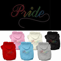 Rainbow Colored Pride Rhinestone Hoodie