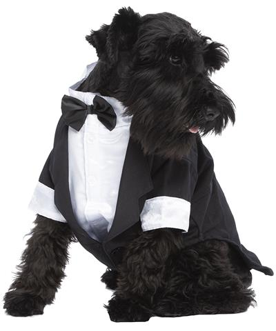 Party Tuxedo, Black/White