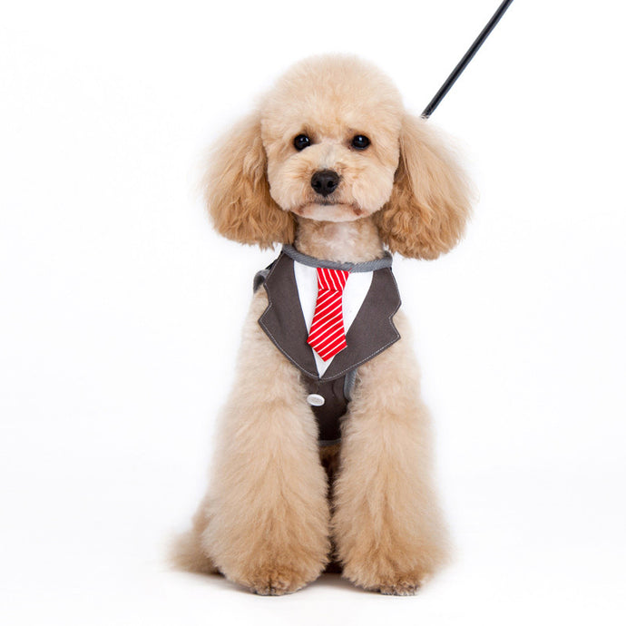 SnapGO Necktie Harness - Bark Fifth Avenue