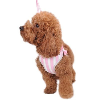 EasyGO Sweetbow Harness and Leash
