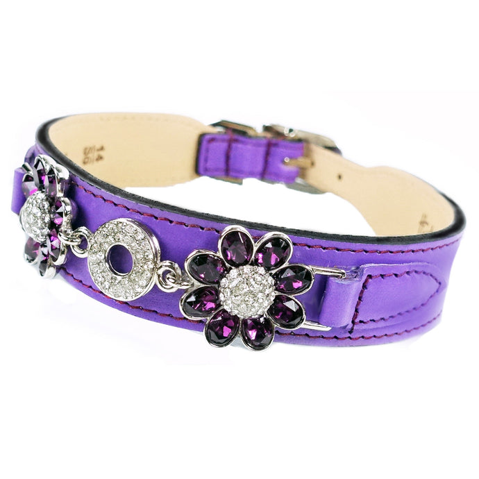 DAISY IN GRAPE & AMETHYST - Bark Fifth Avenue