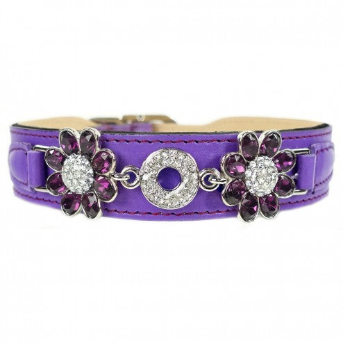 DAISY IN GRAPE & AMETHYST