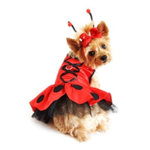 Load image into Gallery viewer, Ladybug Dress Costume - Bark Fifth Avenue