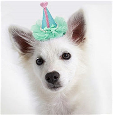 Pretty Party Hat Clip-on - Bark Fifth Avenue