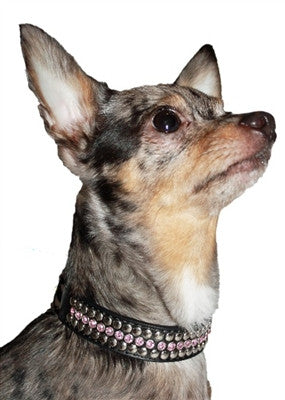 Pink Winston Collars & Leads - Bark Fifth Avenue