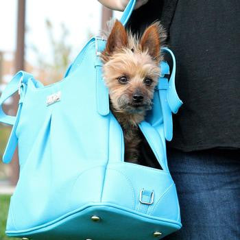 Sea Glass Mia Michele Dog Carry Bag