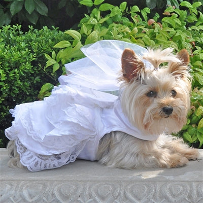 White Satin Wedding Dress, Headpiece, Leash & D-Ring