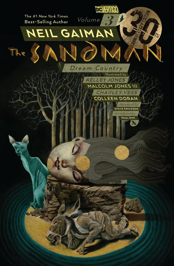 SANDMAN TP VOL 03 DREAM COUNTRY 30TH ANNIV ED - Books