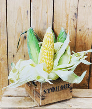 Load image into Gallery viewer, Corn on the cob - British