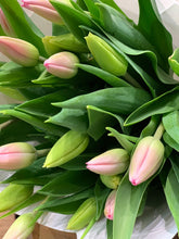 Load image into Gallery viewer, Tulips
