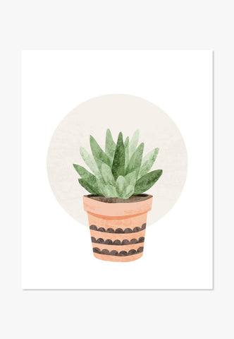 Art Print: Small Cactus Succulent Art Print by Color And Flair Color And Flair
