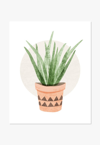 Art Print: Tall Cactus Succulent Art Print by Color And Flair Color And Flair