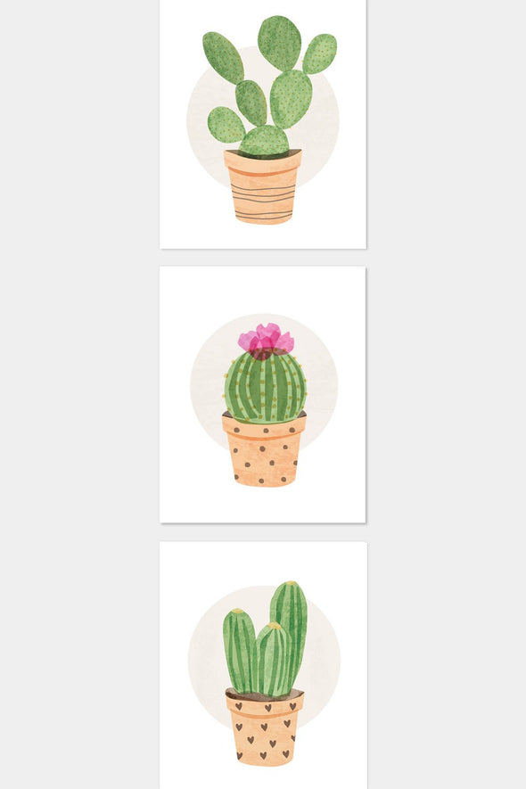 Image of 3 Cactus Succulent Plants in Clay Pots Art by ColorBee ColorAndFlair