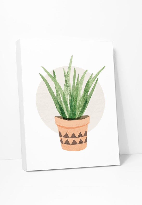 Tall Cactus Succulent Canvas Print Gallery Wrapped Canvas by ColorBee Creative