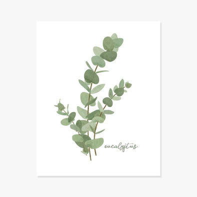 Art Print: Eucalyptus Botanical Print Art Prints by Color And Flair Color And Flair
