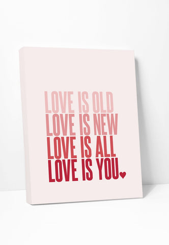 Beatles Lyrics Canvas Print: Love Is Old Love Is New in pink ombre