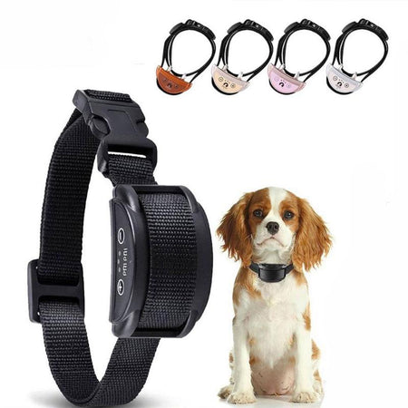 Collier anti-aboiement |  Dispositif de Dressage Chien