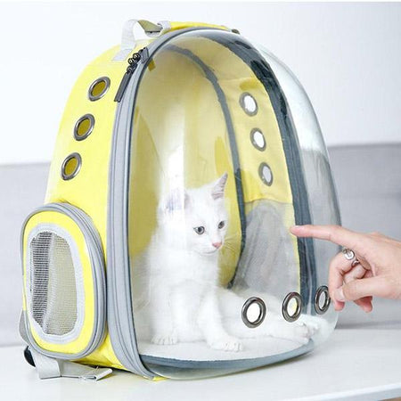 Sac De Transport Pour Chat | Transparent |Avenue des Animaux™