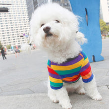 Load image into Gallery viewer, Cotton People-Pet Dog Matching Clothes for Small Dogs