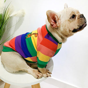 Rainbow striped puppy people matching clothes thick french bulldog sweater dog clothes for small dogs