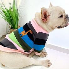 Load image into Gallery viewer, Rainbow striped puppy people matching clothes thick french bulldog sweater dog clothes for small dogs
