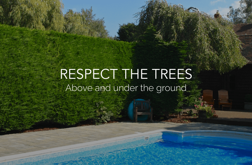 Respect the trees when planning a pool installation