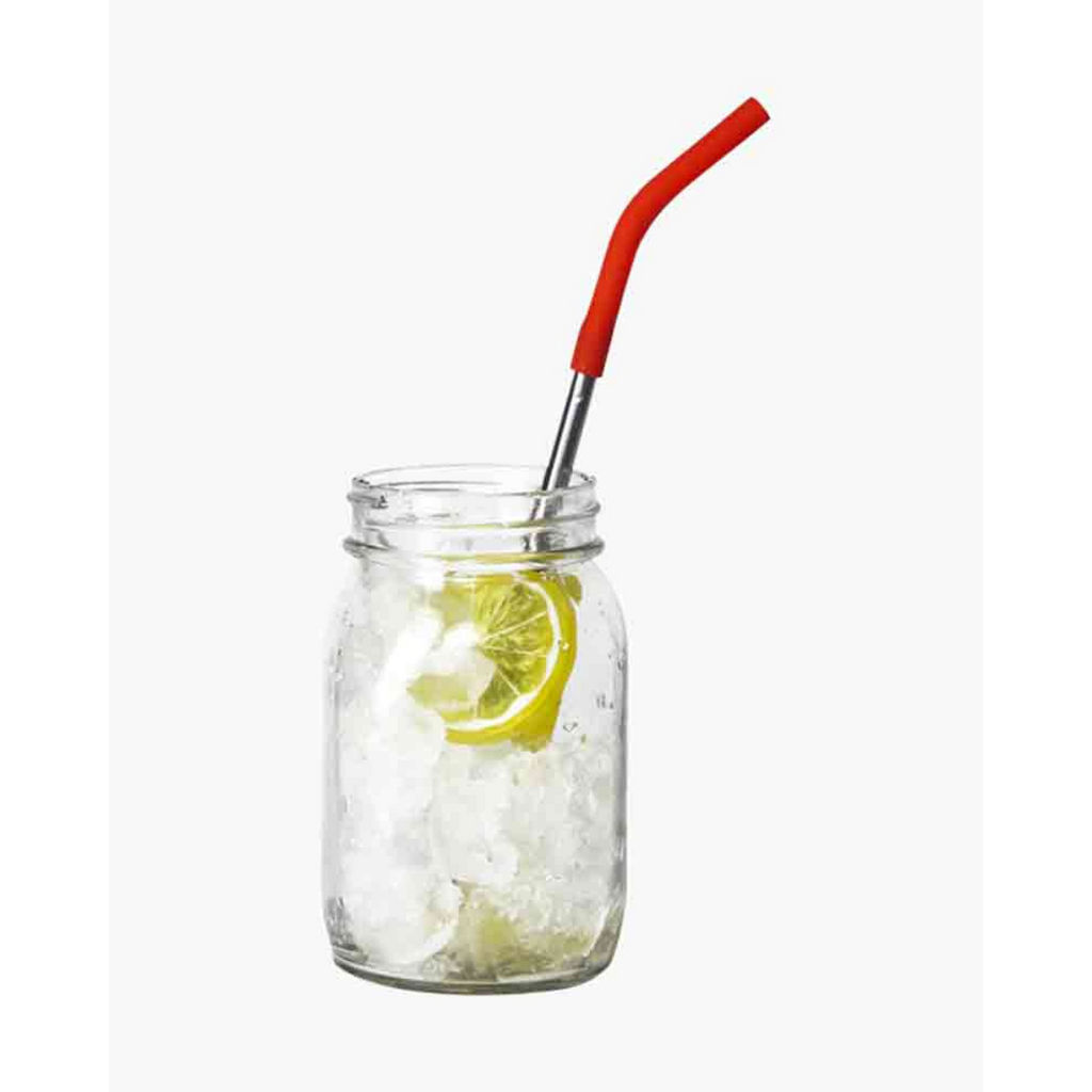 Reusable Stainless Steel and Silicone Straws
