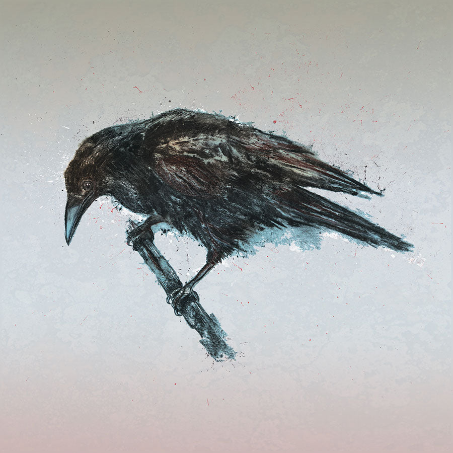 Crow - Square Mounted Giclée Print