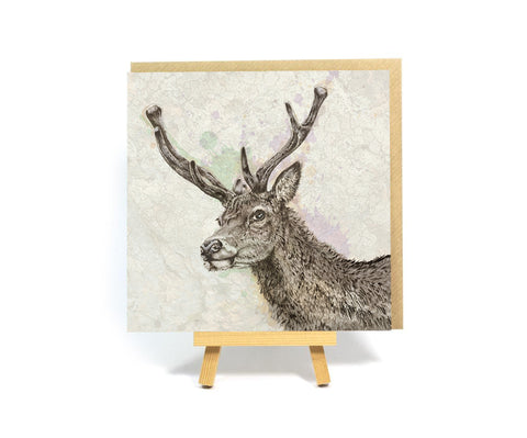 Glencoe Stag square greeting card
