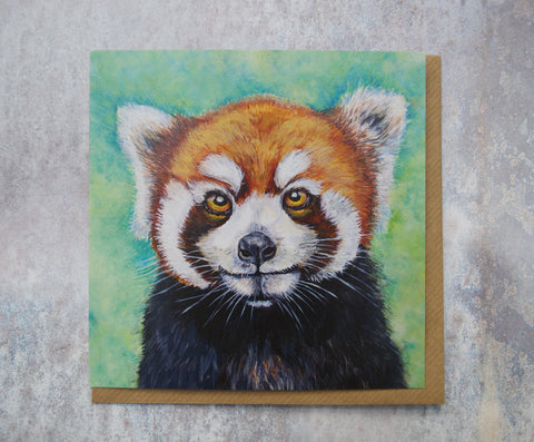 Red Panda square greeting card