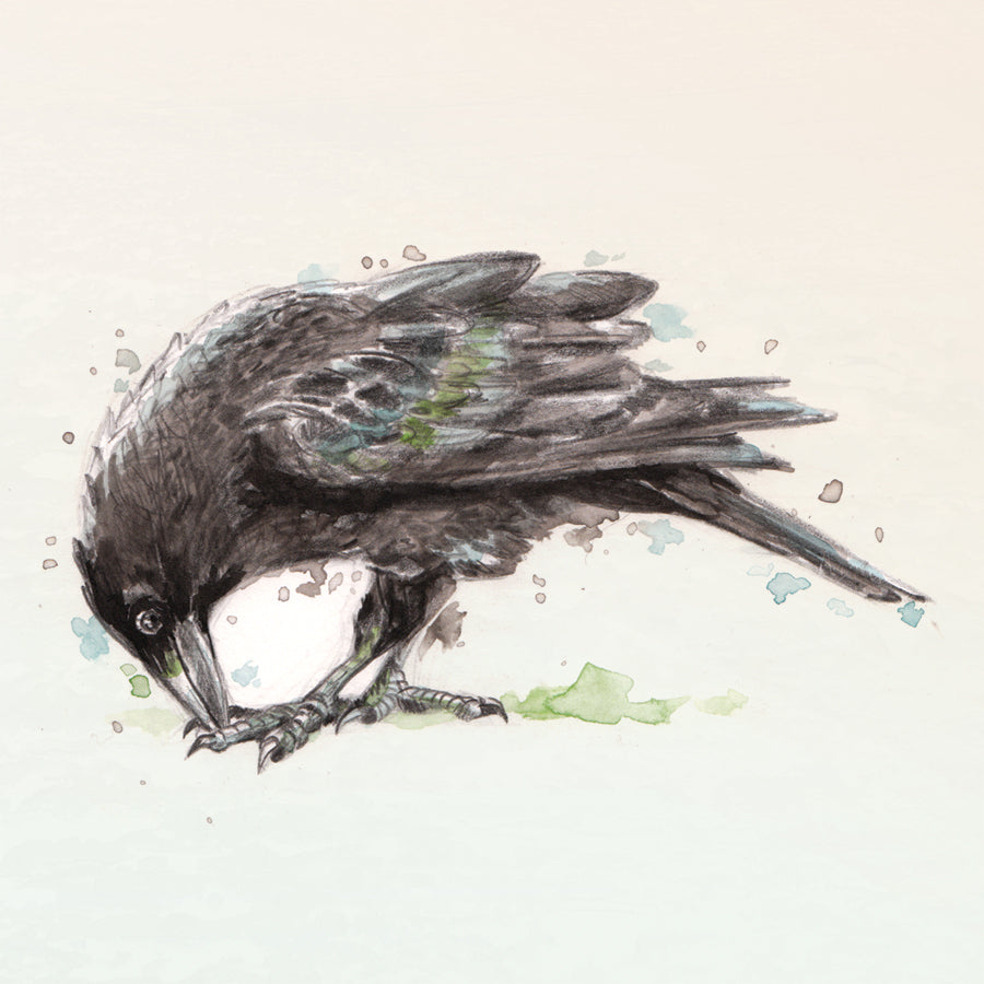 Toe Crow - Square Mounted Giclée Print