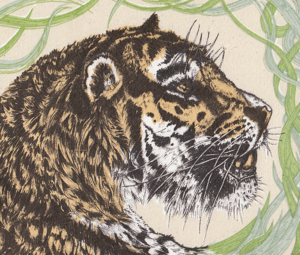 Tiger screen print - edition of 20