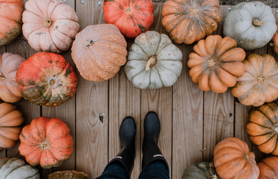 7 Ways to Upcycle your Pumpkin