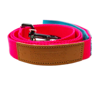 Rebel Paws Hemp Dog Lead - Raspberry - Medium