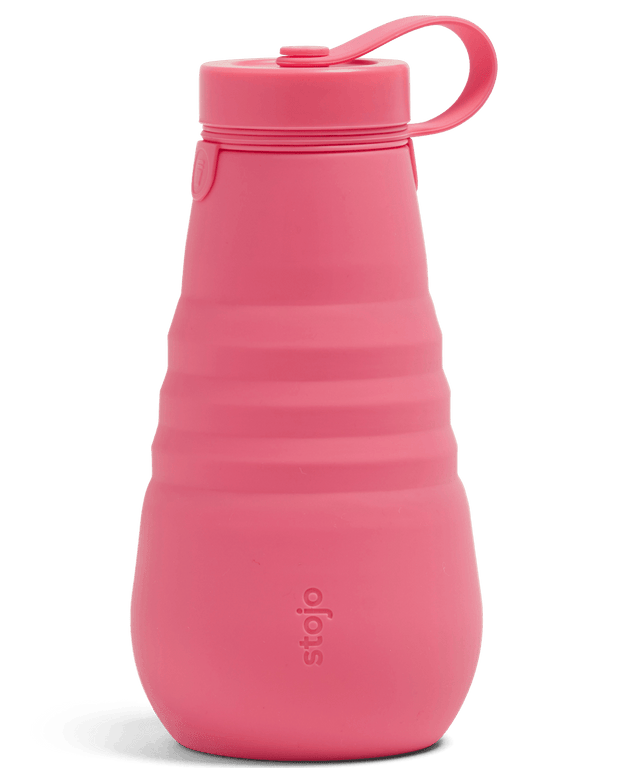 Stojo Collapsible Bottle 20oz - Peony