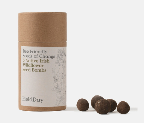 Bee Friendly Seed Bombs