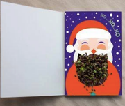 Help Santa! - Growing Greeting Card