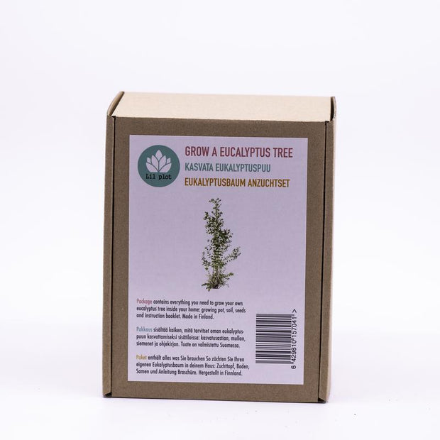 Grow Your Own Eucalyptus Tree Kit