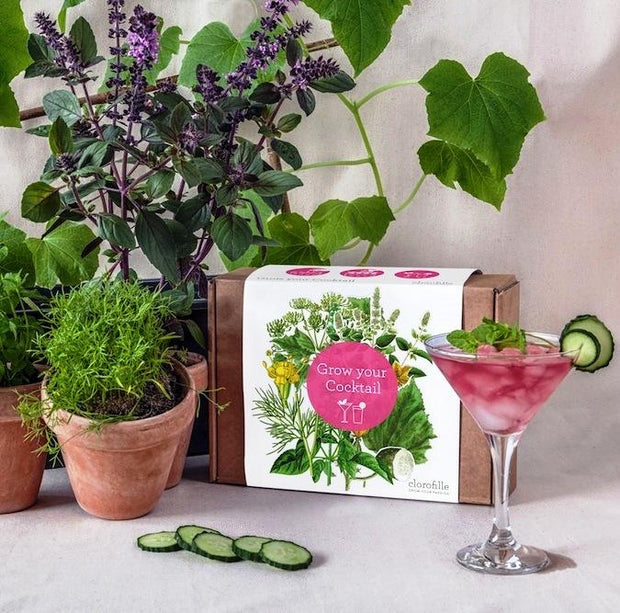 Grow Your Own Cocktail Set