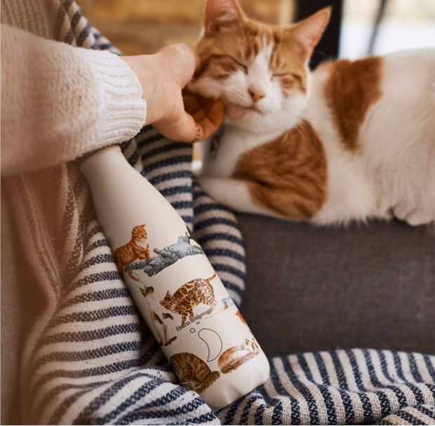 Emma Bridgewater Cats Insulated Bottle by Chilly's - 500ml