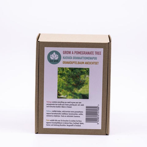 Grow Your Own Pomegranate Tree Kit