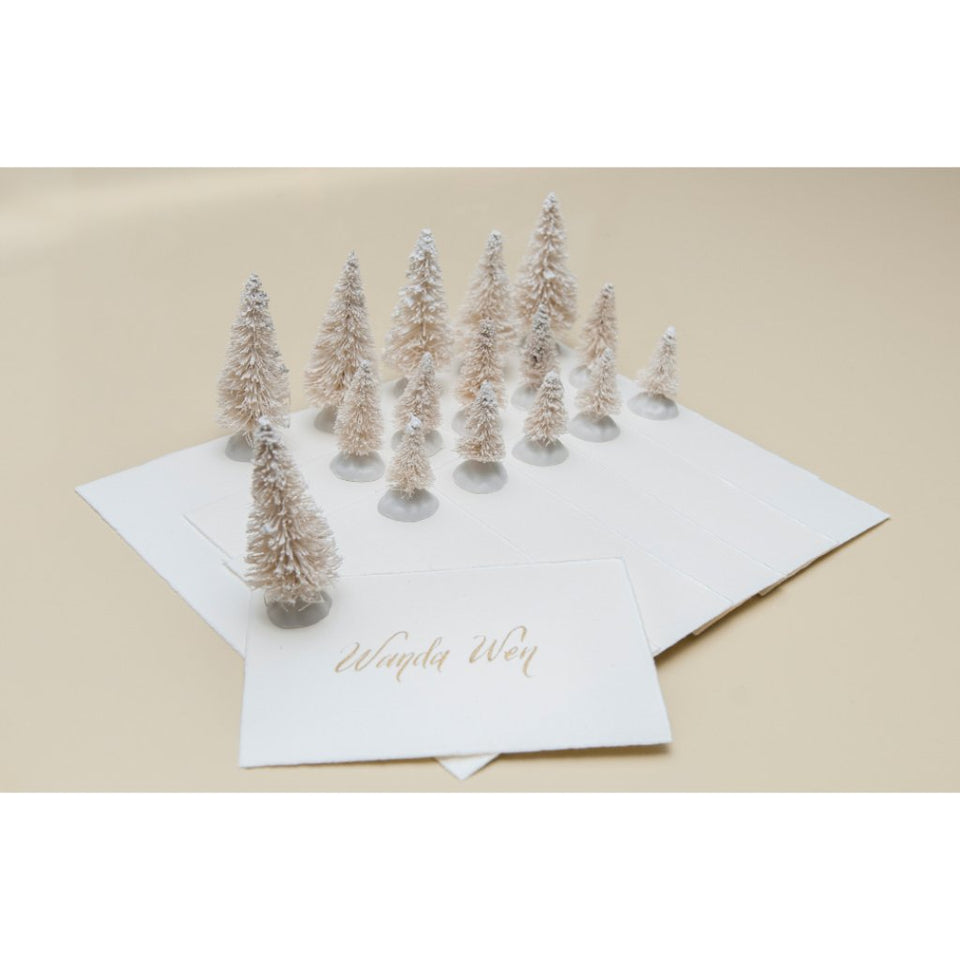 Winter Wonderland Place Cards - White