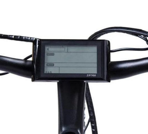 Ecotric Leopard LCD display