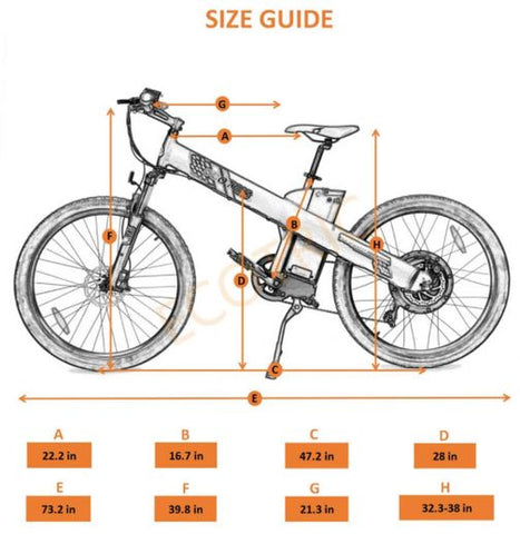 Ecotric Seagull size guide