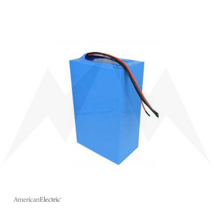24V 30Ah Lithium-Ion Battery Pack-AELB003-Ride and Go Electrics