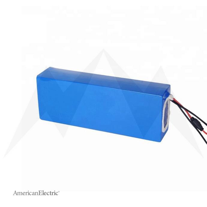 48V 10Ah Lithium-Ion Battery Pack-AELB009-Ride and Go Electrics