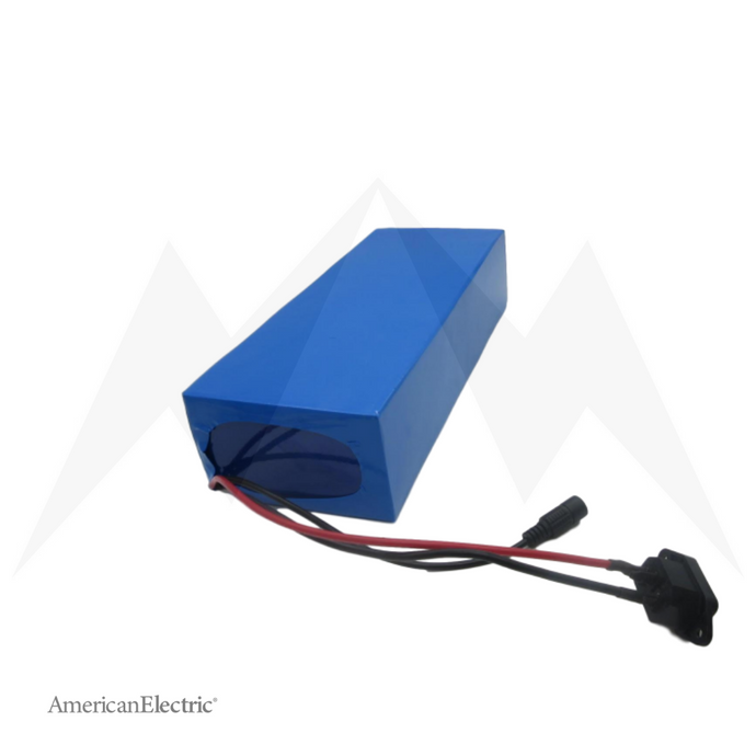 48V 20Ah Rectangle Lithium-Ion Battery Pack-AELB012-Ride and Go Electrics